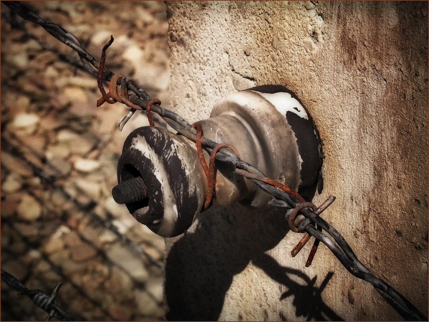 Gegen das Vergessen ( Auschwitz )