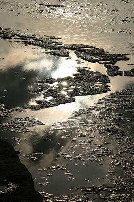Gegenlicht 2: Weltnaturerbe-Strand bei Byxelkrok, Öland, Schweden