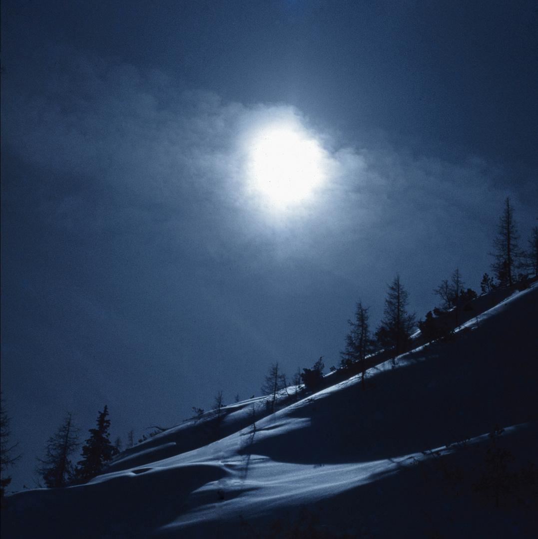 Gegenlicht am Schneehang