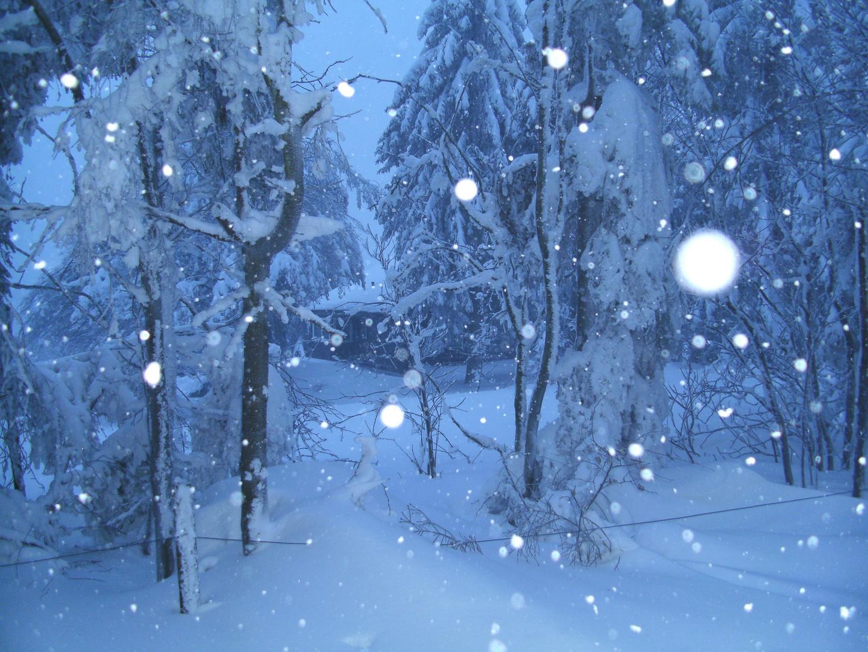 geheimnisvolle h tte im schnee sauerland foto bild jahreszeiten winter natur bilder auf. Black Bedroom Furniture Sets. Home Design Ideas