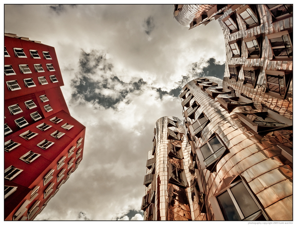 • GEHRY | 05 •