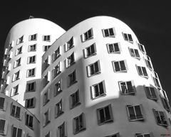 Gehry #1001