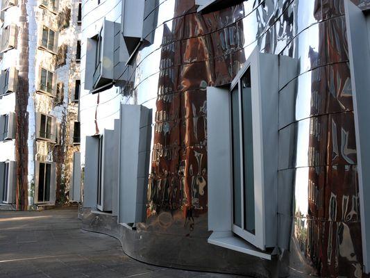 Gehry-Bauten - Seitenfront