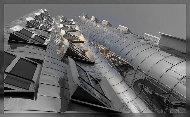"""Gehry - """" Blechbüchse """""""