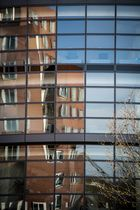 Gehry in the mirror