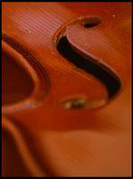 Geige 2