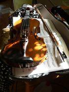 Geige am Morgen