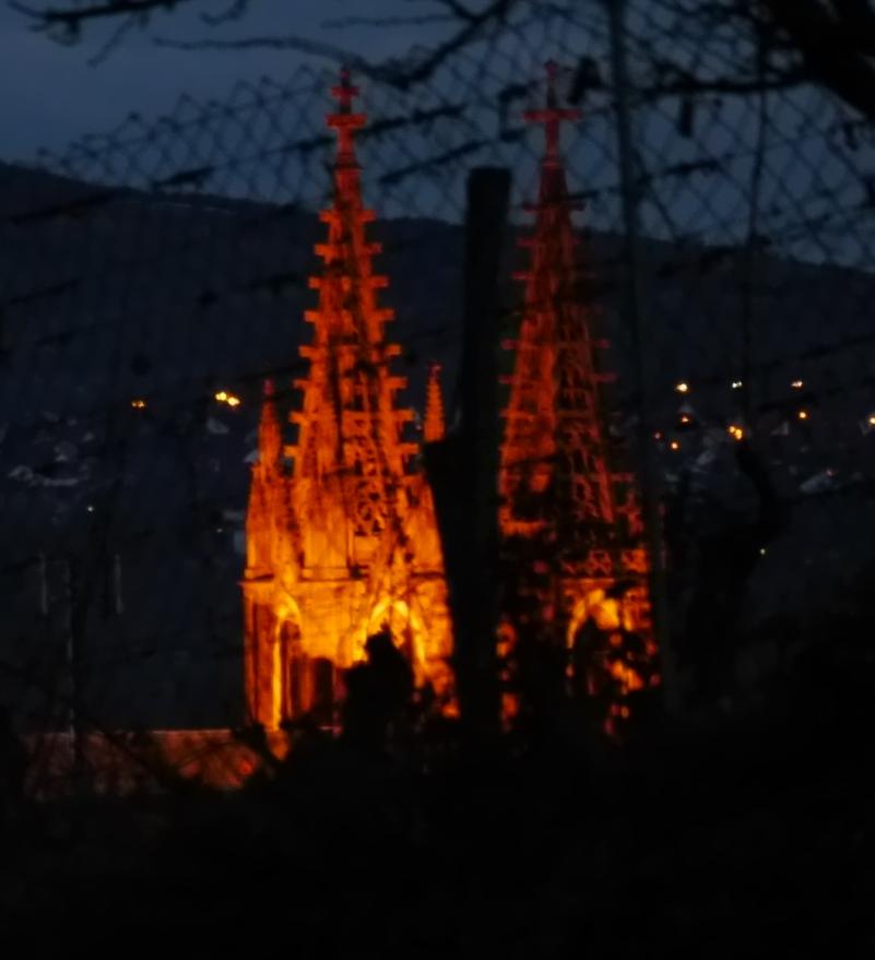 Geisenheimer Dom bei Nacht