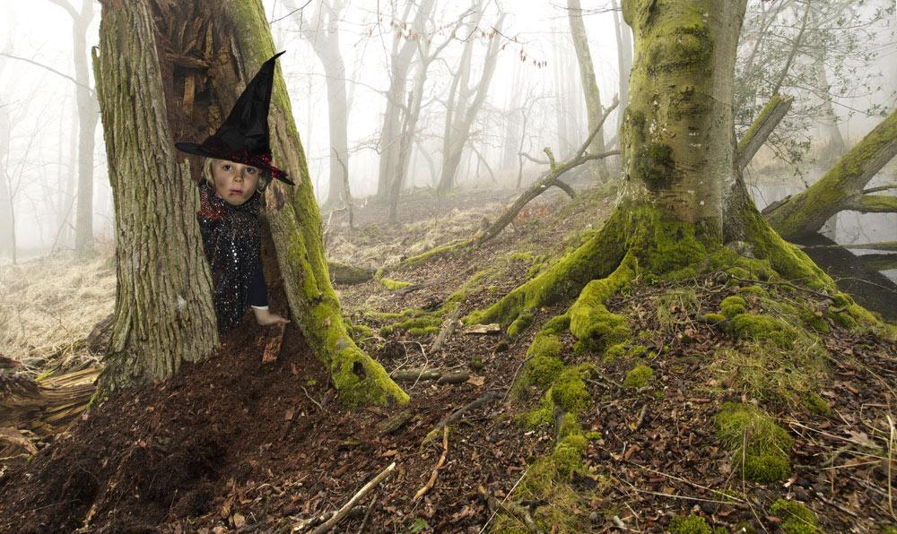 Geister im Nebelwald