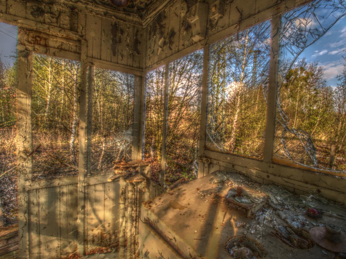 Geisterhaus oder Geisterwald?