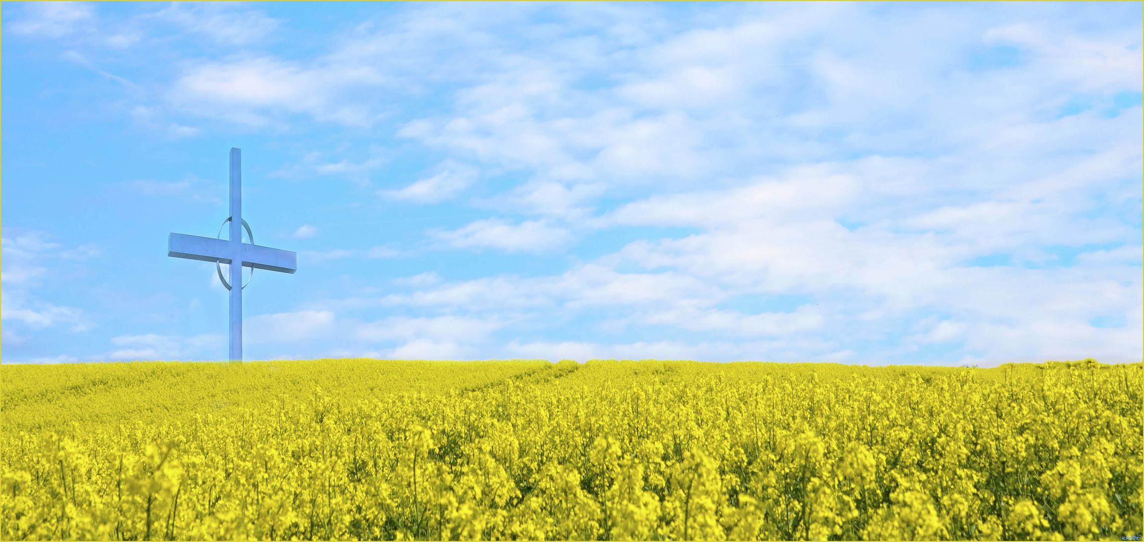 Gelb trifft Blau