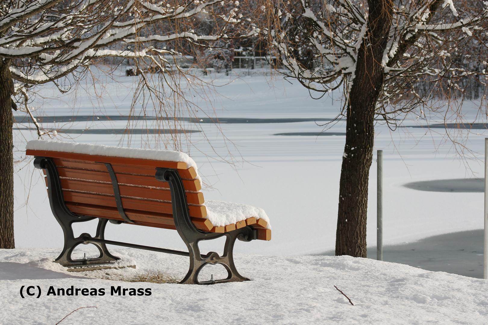 gelbe Bank im Schnee (Schneelandschaft)