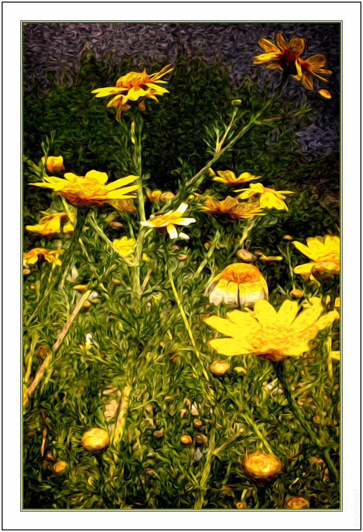Gelbe Blumen am Straßenrand!