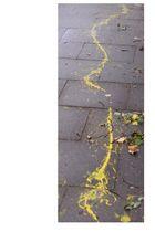 gelbe Spur