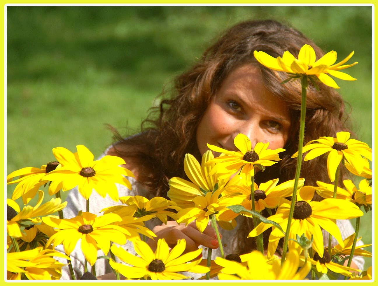 Gelber Sommer