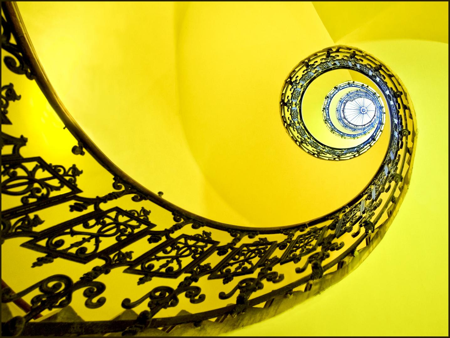 gelbes Schneckerl