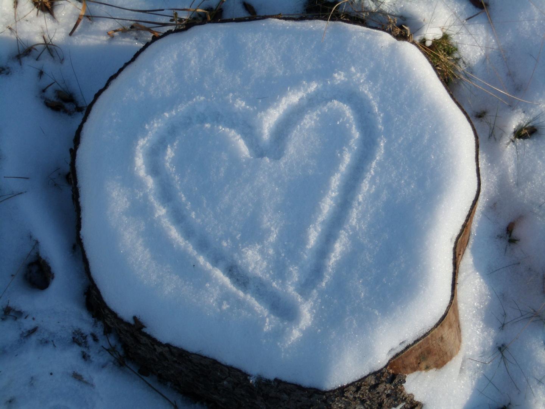 geliebter Winter - ade-