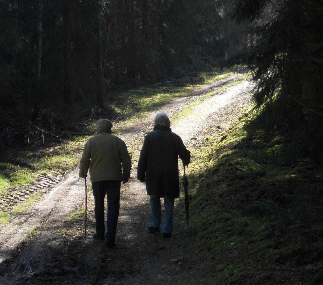 Gemeinsam Altern