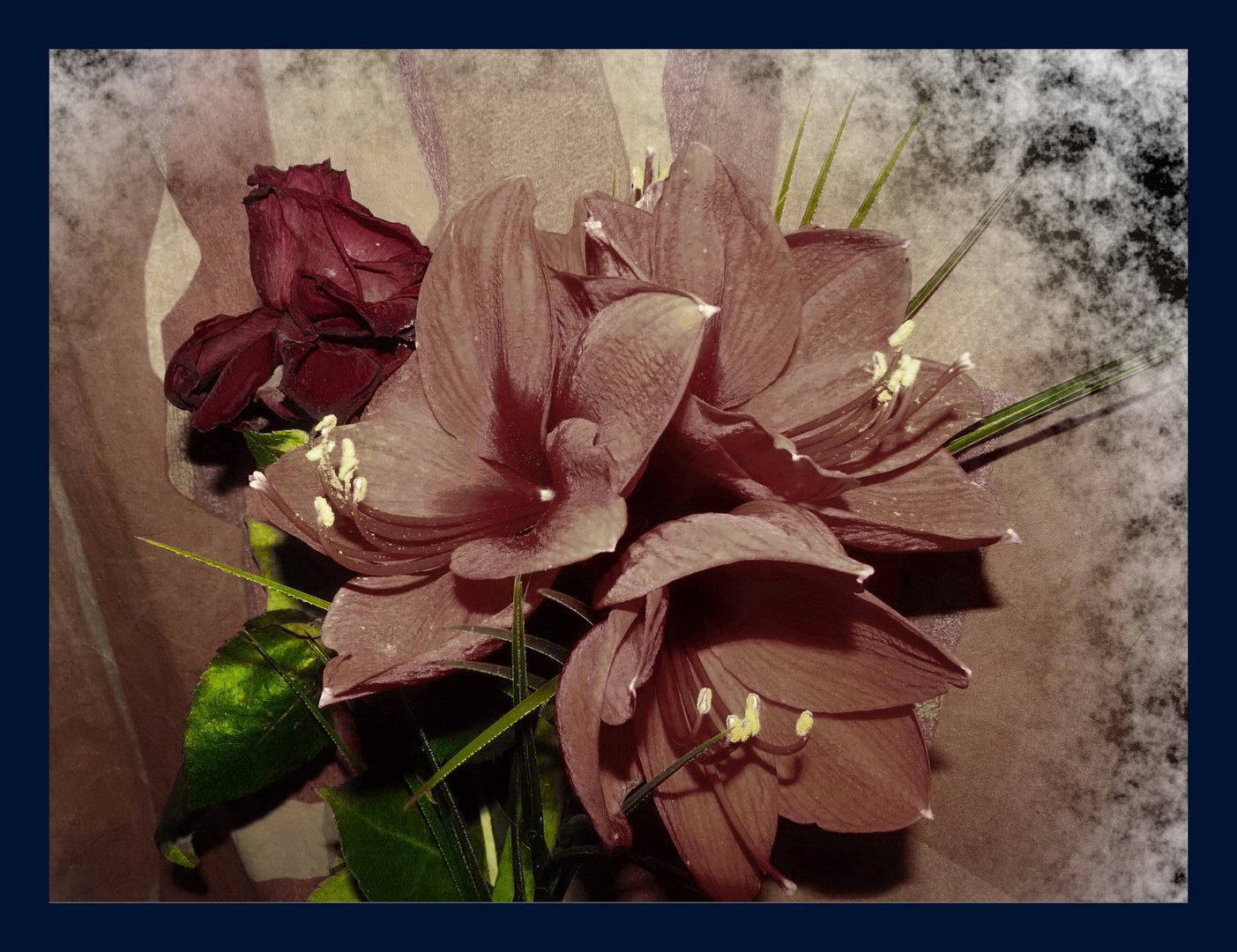 gemeinsam der Endlichkeit entgegen, eine Rose-drei Tulpen,