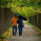 gemeinsam im Regen