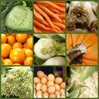 Gemüse im Detail...