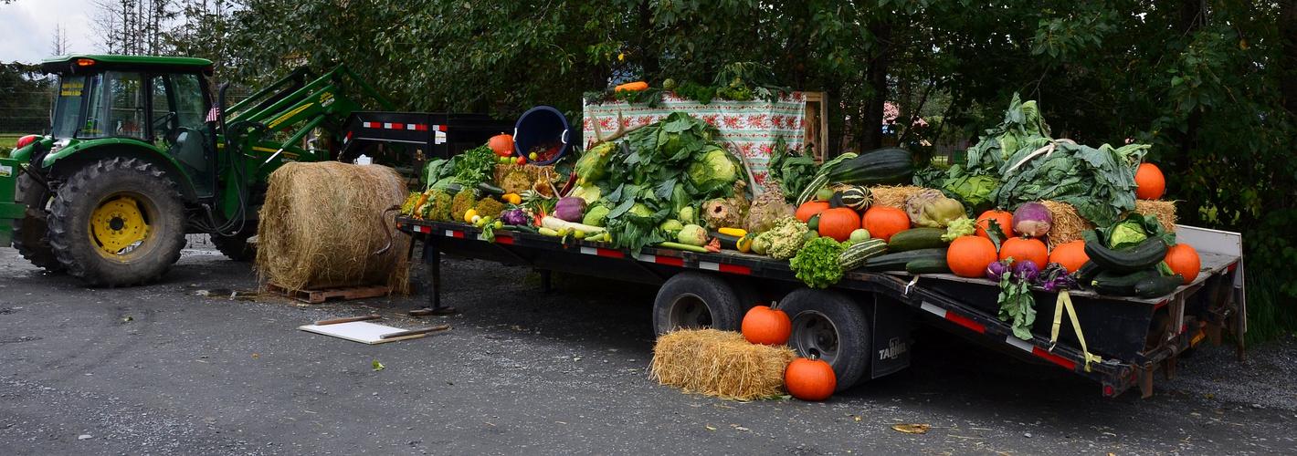 Gemüse in Alaska