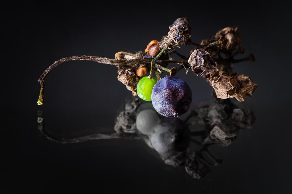 Generation wine