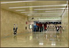Gente che va e gente che viene all`aeroporto di Lisboa.