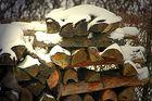 Genug Holz vor der Hüttn