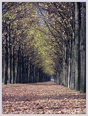 Georgengarten im Herbst