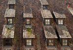 "GERMANIA: BebenHausen ""Windows"""