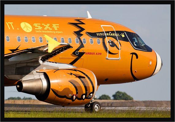 """Germanwings A319 """"Bearbus"""""""