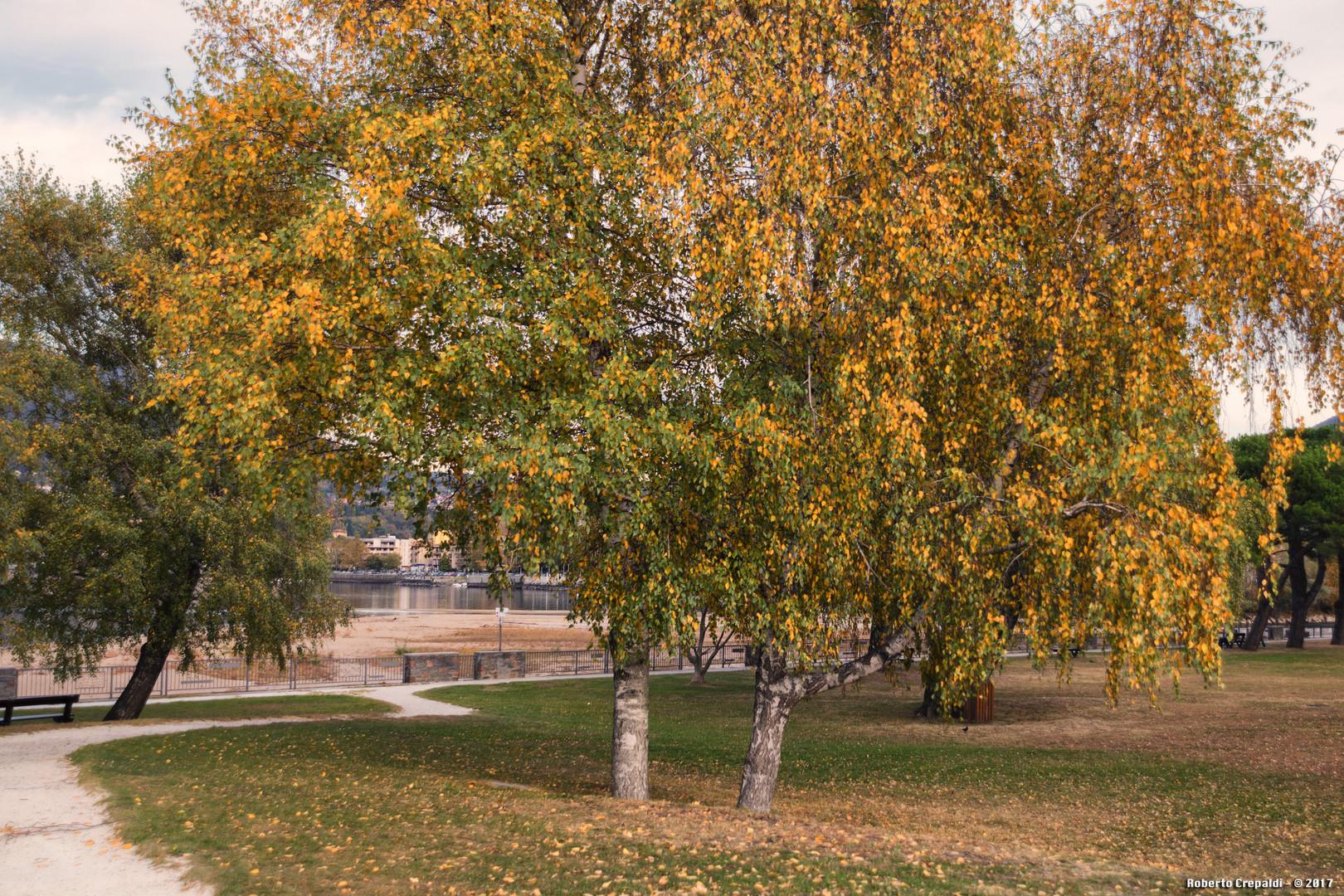 Germignaga, giardini pubblici