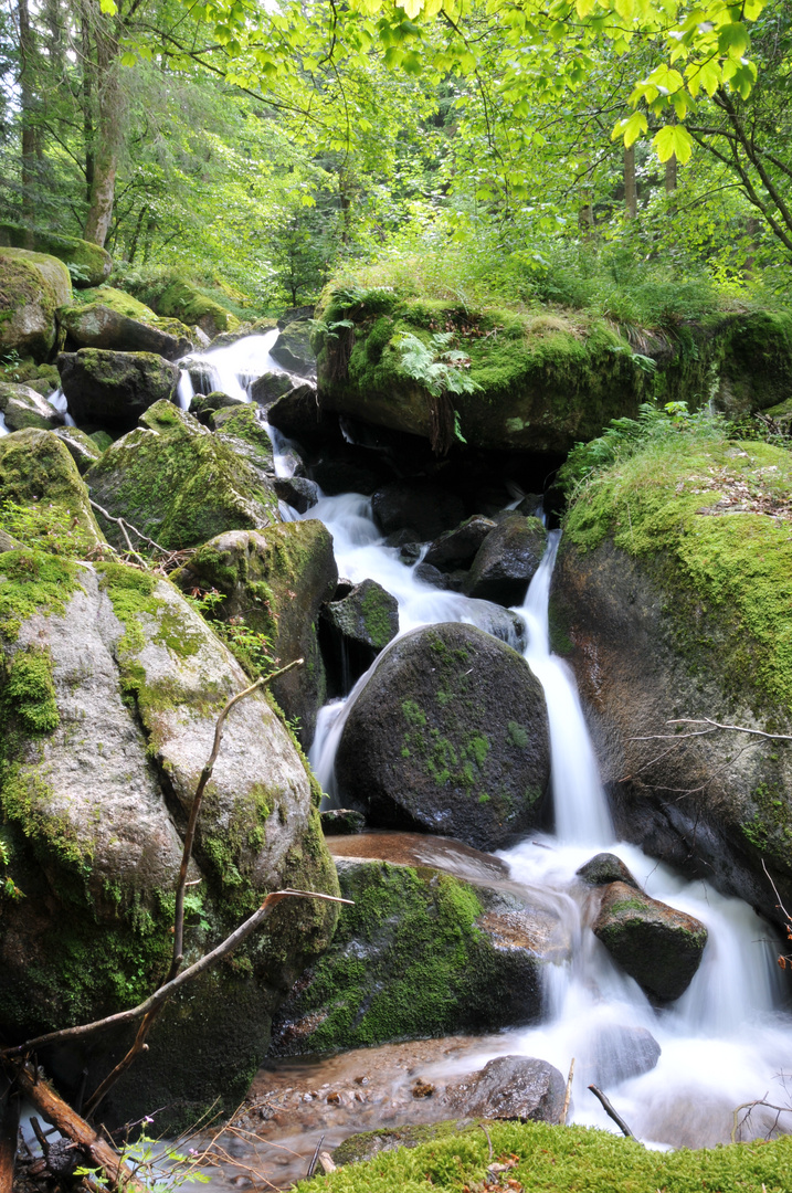 Gertelbacher Wasserfälle, Bühlertal Teil 1