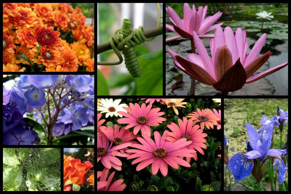 gesammelte Farben
