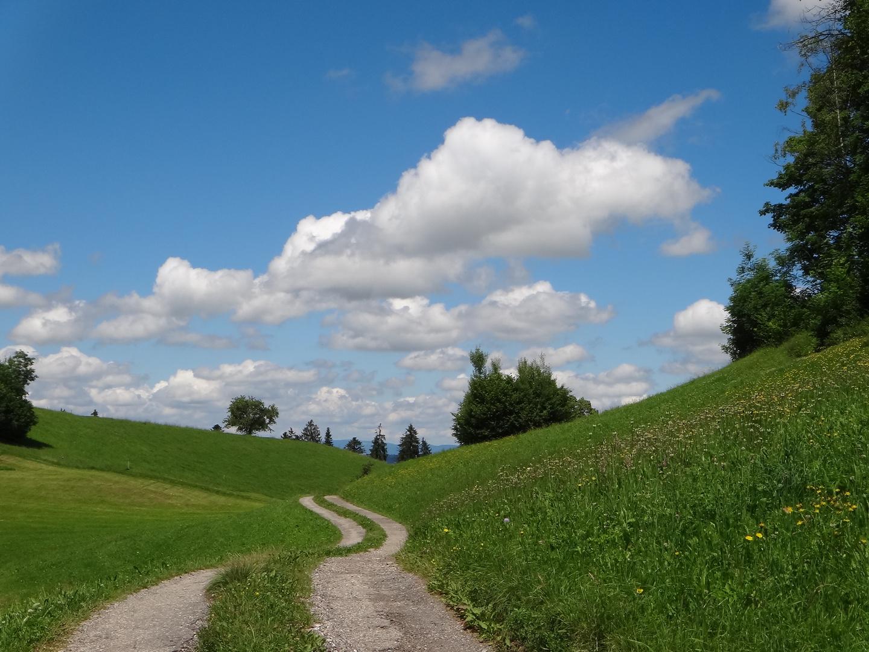 Geschwungene Hügel, geschwungener Weg - das ist Emmental BE