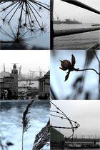 .. gesehen im Winter 12/13