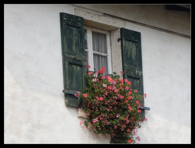 gesehen in Torri de Benaco, Gardasee,.,