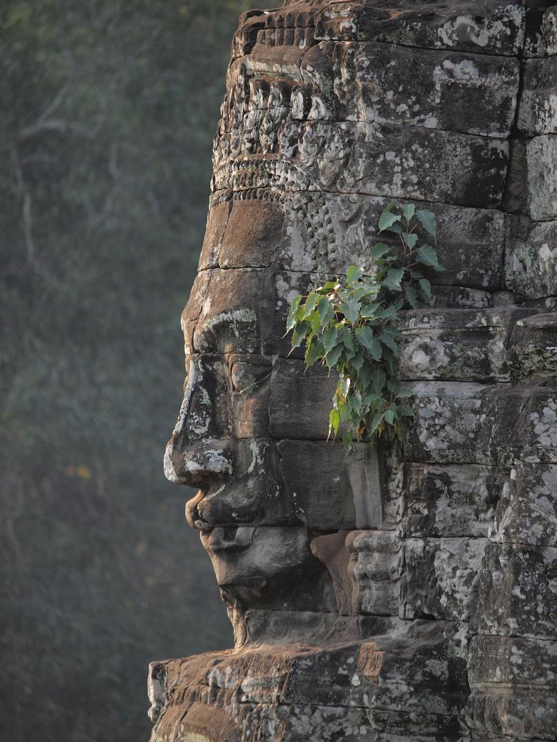 Gesicht von Angkor Thom