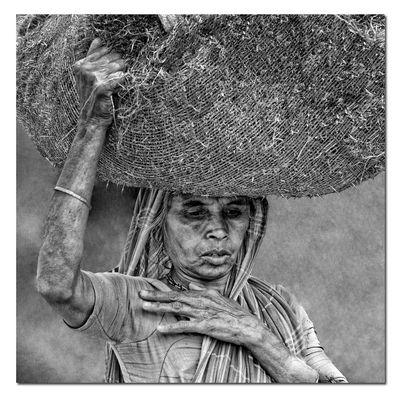 Gesichter Indiens III - Malik Ghat Flower Market
