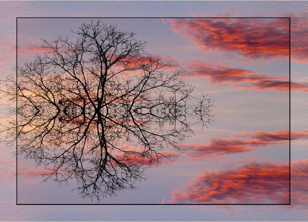 - gespiegelt - by Rainer Schulz