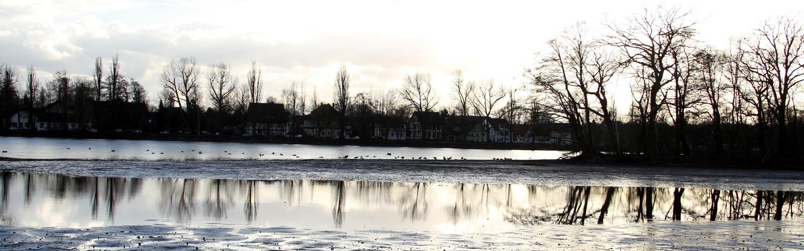 Gespiegelte winterliche Landschaft