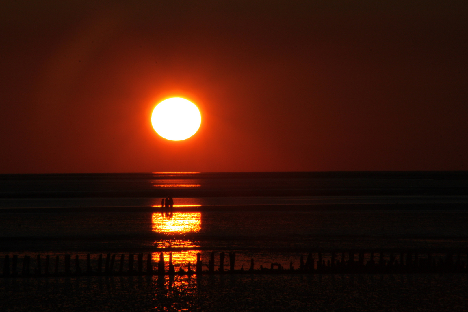 Gespräche im Watt bei Sonnenuntergang