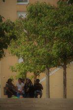 Gespräche  unter schattenspendenden Bäumen