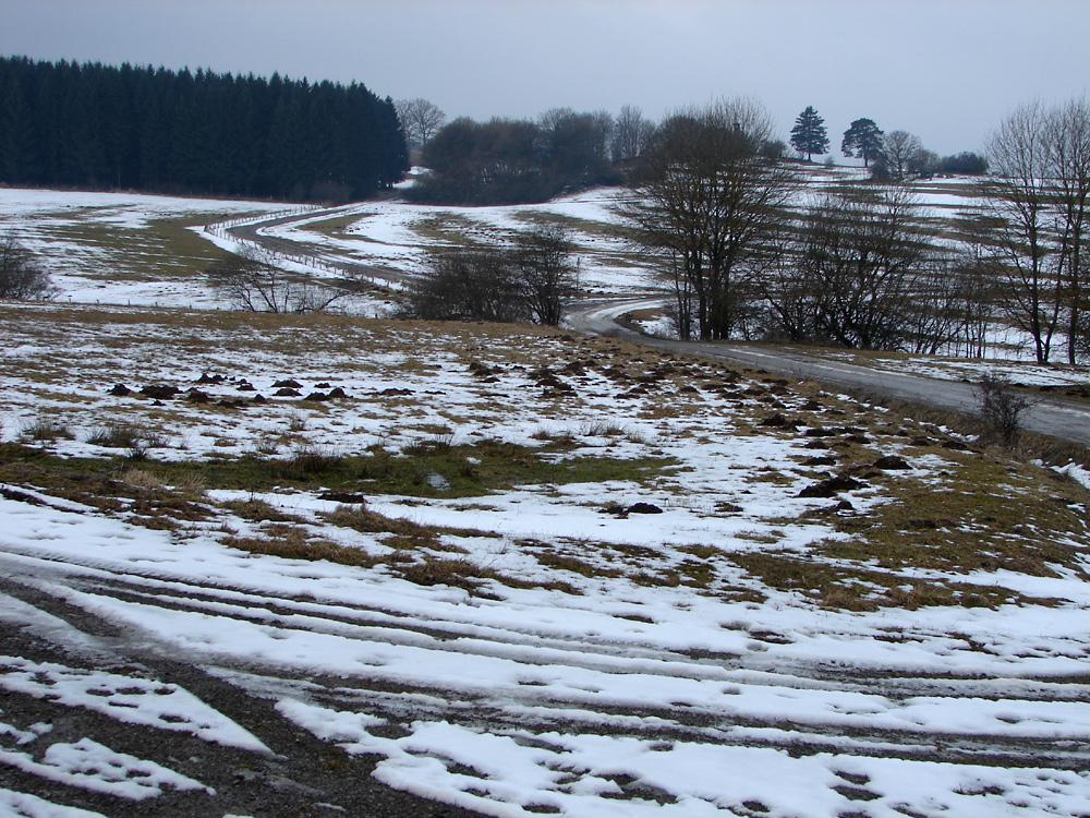 Gesprenkelte Winterlandschaft in der Eifel