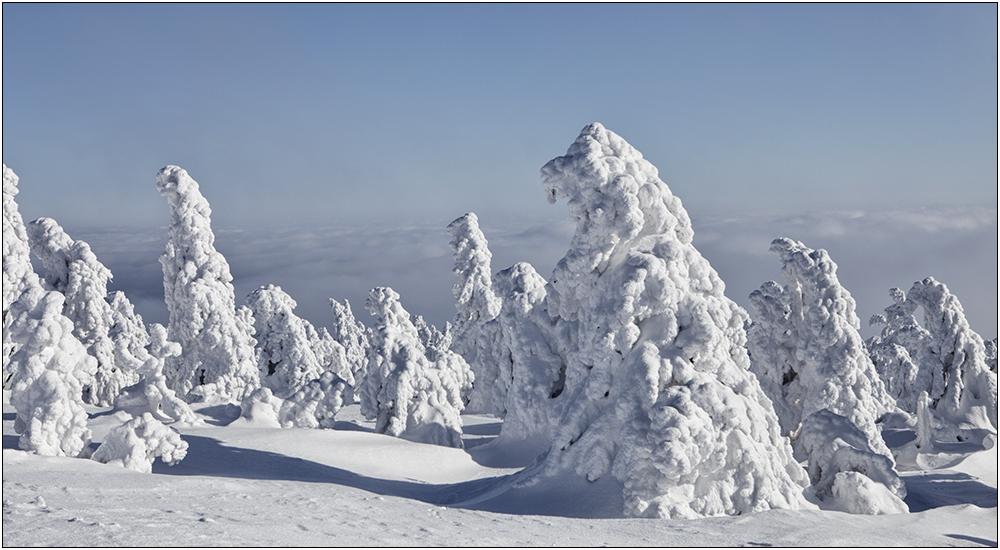 Gestalten des Winters