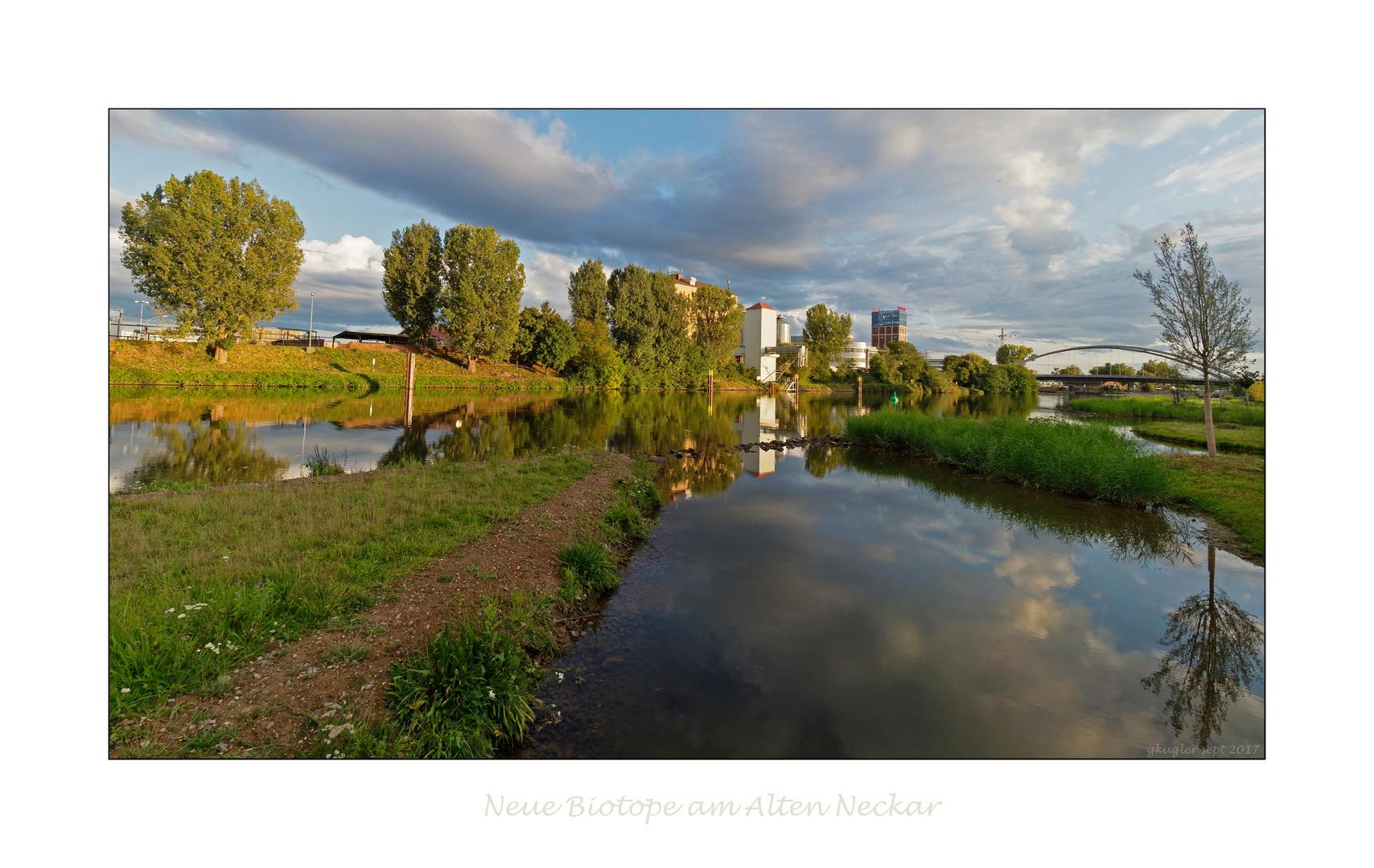 Gestaltung des Neckarufers in Heilbronn