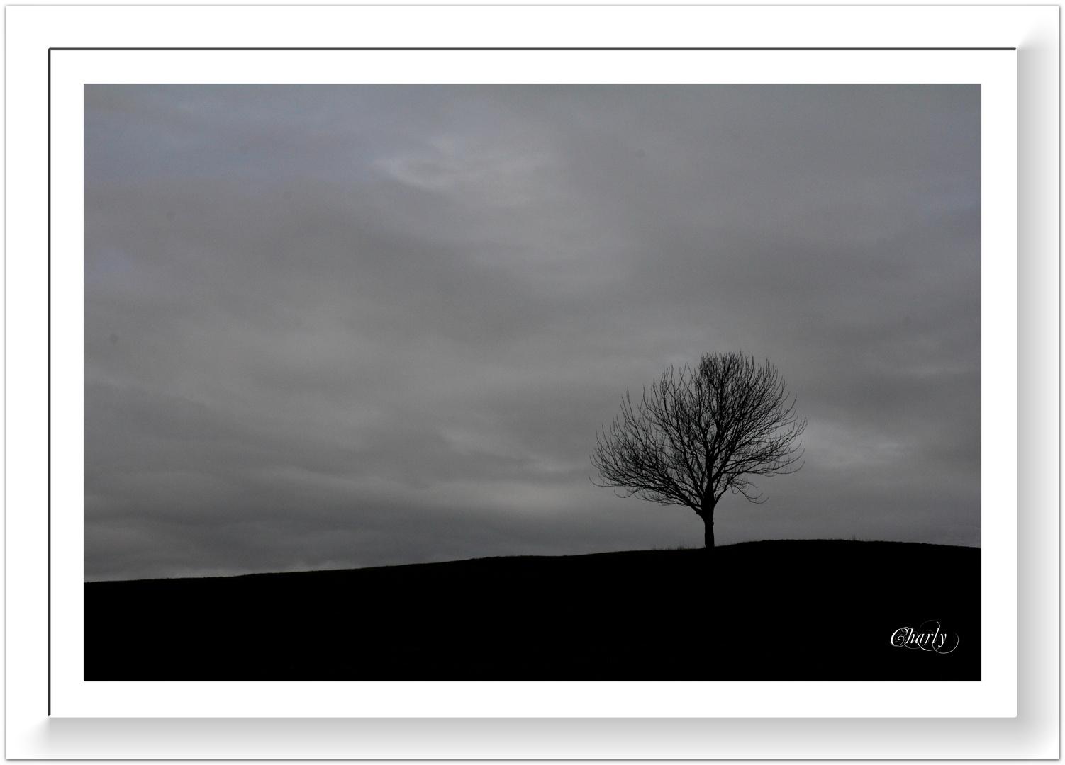 Gestern.......in der Eifel !