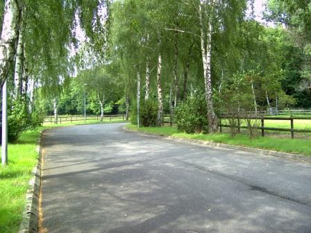 Gestüt Forstwald 1