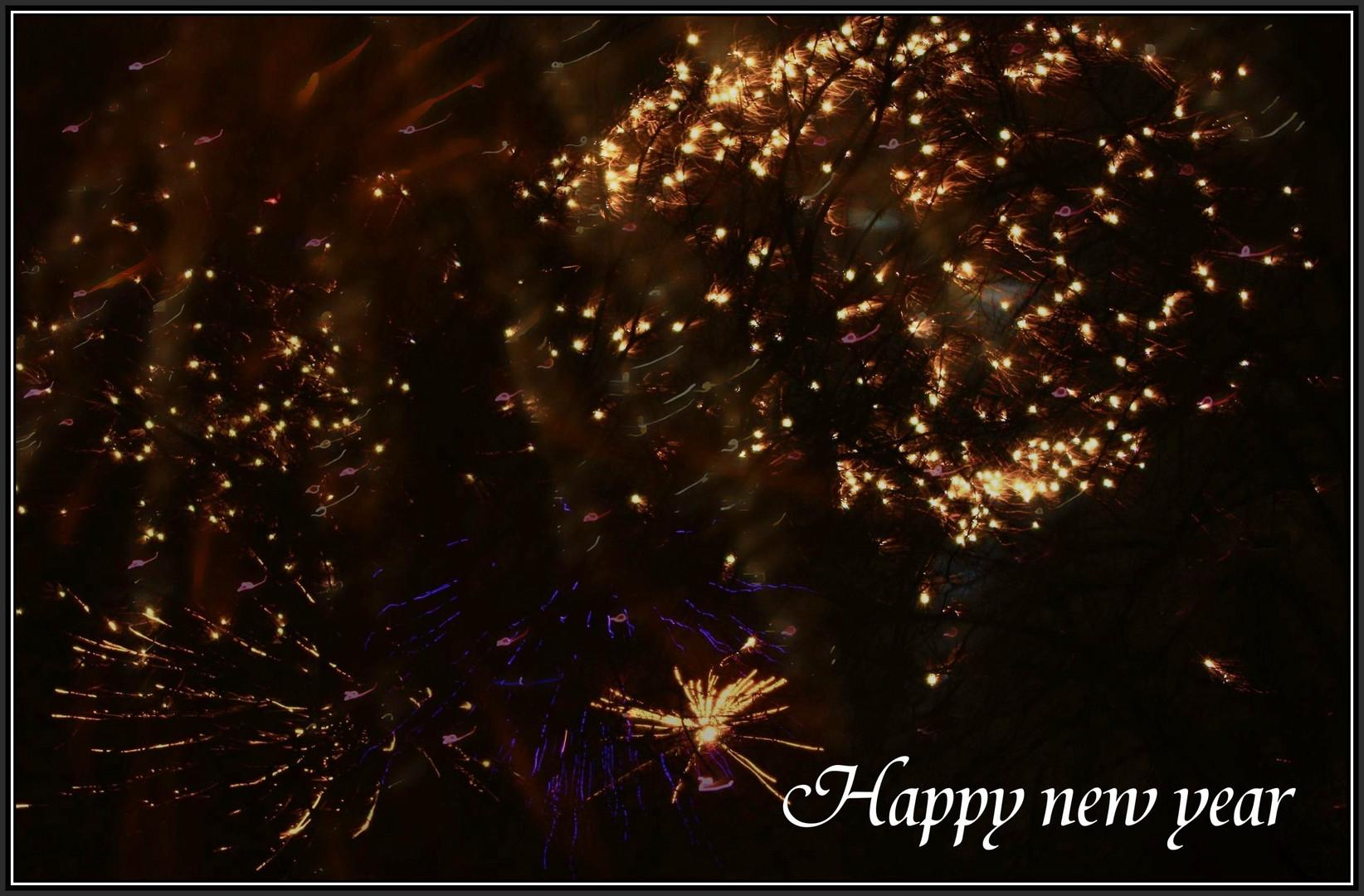 Gesundes Jahr 2011!